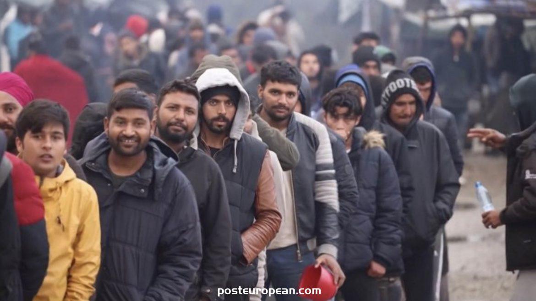 七日內有21名外國人從波斯尼亞和黑塞哥維那被遣散