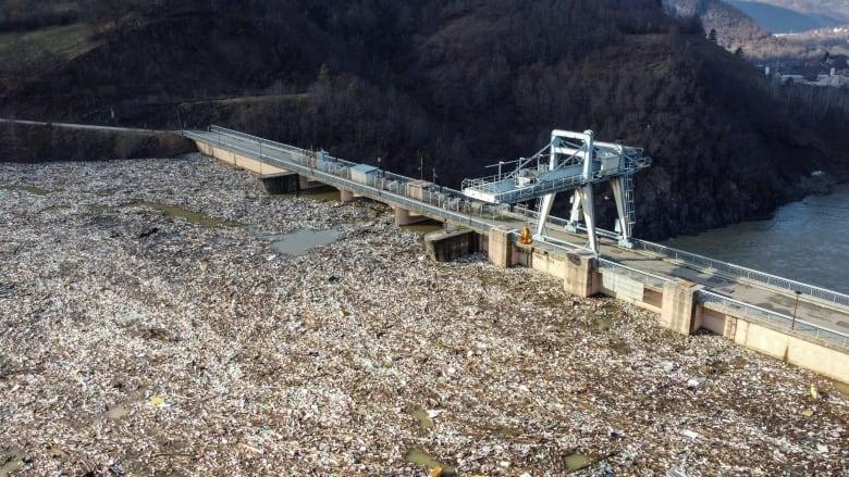 塑料垃圾堵塞塞爾維亞大壩威脅水力發電廠